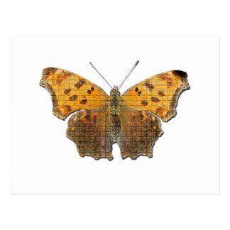 Butterly anaranjado postal