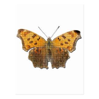 Butterly anaranjado tarjetas postales