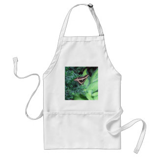 Butterly Black Swallowtail on Hosta Adult Apron