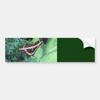 Butterly Black Swallowtail on Hosta Bumper Sticker