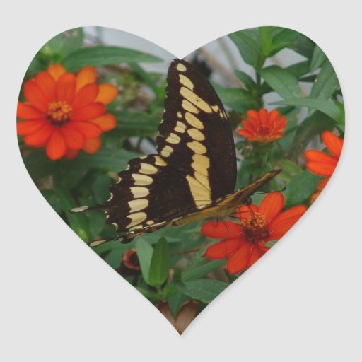 Butterly on daisy heart sticker