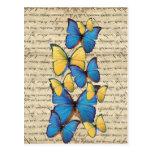 Butterrflies azules y amarillos postal