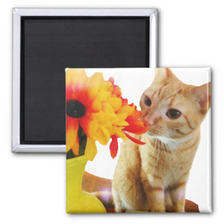Butters Says Hi Cute Cat Square Magnet