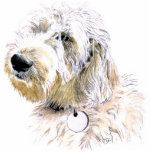 "Butters the Labradoodle Sculpture<br><div class=""desc"">Butters the Labradoodle</div>"