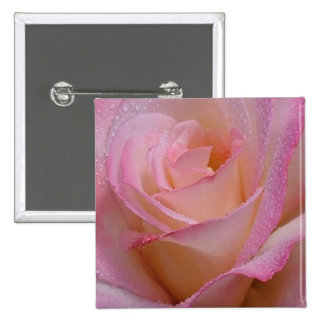 Button Beautiful Pink Rose