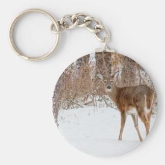 Button Buck Deer in Winter White Snowy Field Keychain