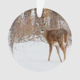 Button Buck Deer in Winter White Snowy Field Ornament