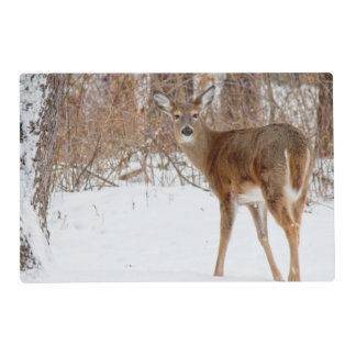 Button Buck Deer in Winter White Snowy Field Placemat