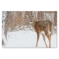 Button Buck Deer in Winter White Snowy Field Tissue Paper