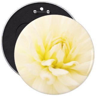 Button dahlias macro