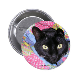 Button: Funny Cat wrapped in Blankets Pinback Button