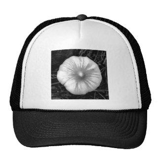 Button Mushroom Hat
