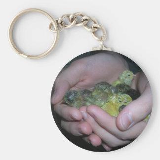 button quail keychain