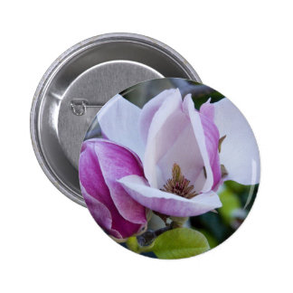 "Button, Two Magnolias, Open and Shut"" 2 Inch Round Button"