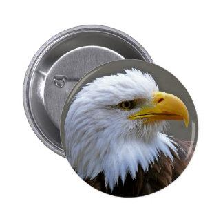 Button Weis head eagle eagle