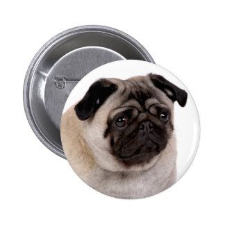 button with pug muzzle