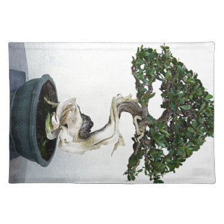 Buttonwood Bonsai Tree Cloth Placemat