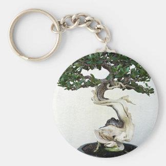 Buttonwood Bonsai Tree Keychain