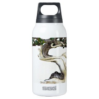Buttonwood Bonsai Tree SIGG Thermo 0.3L Insulated Bottle