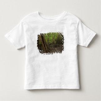 Buttress Roots. Rainforest, Mapari Rupununi, 2 Toddler T-shirt