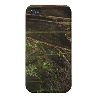 Buttress Roots. Rainforest, Mapari Rupununi, iPhone 4 Covers
