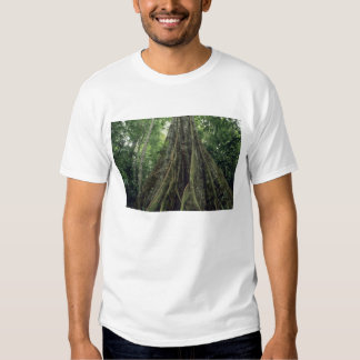Buttressed tree in rainforest, Corcovado T Shirt