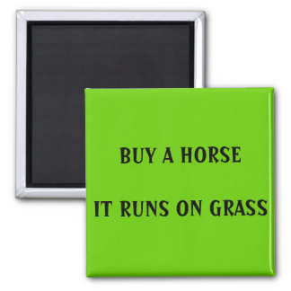 BUY A HORSE - magnet