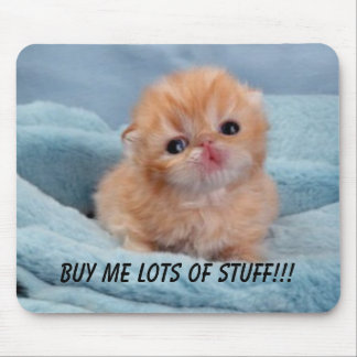 Buy for the cute kitten mouse pad