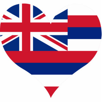 Buy Hawaii Flag Photo Sculptures