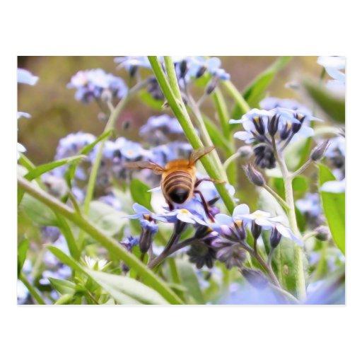 Buzz!  Busy Bee Backside Postcard