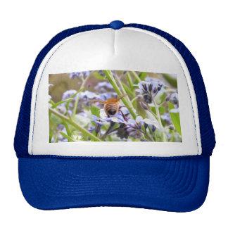 Buzz!  Busy Bee Backside Trucker Hat