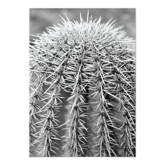Buzz Cut Cactus (AZ Sonoran Desert) Invite