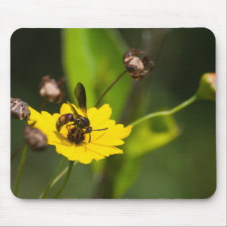 Buzz Mouse Pad