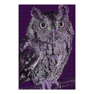 Buzz the Owl (purple dither pattern) Poster