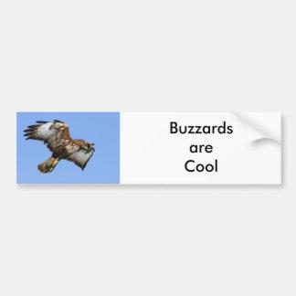 Buzzard  1 bumper sticker