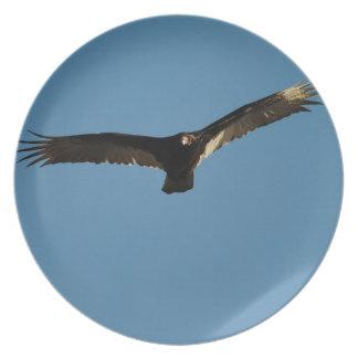 Buzzard in Flight 1 Dinner Plate