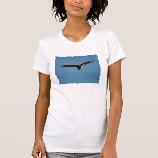Buzzard in Flight 1 Tshirt
