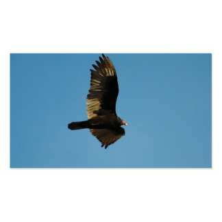 Buzzard in Flight 2 Double-Sided Standard Business Cards (Pack Of 100)