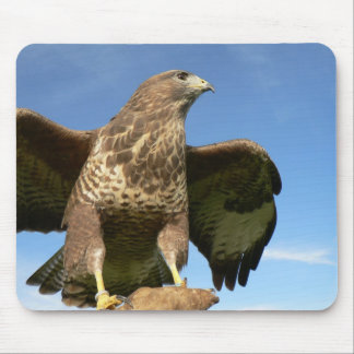 Buzzard Lookout Mouse Pad