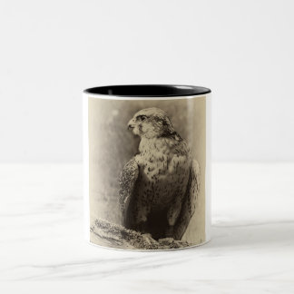 Buzzard Mug Two-Tone Mug