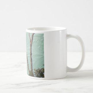buzzard on stucco coffee mugs
