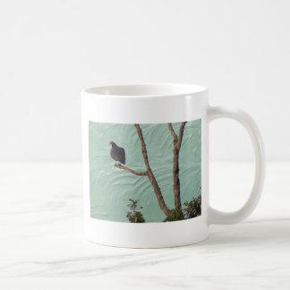 buzzard on stucco mugs