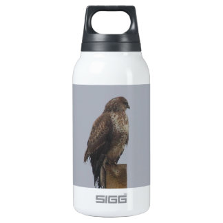 Buzzard 10 Oz Insulated SIGG Thermos Water Bottle