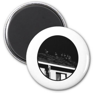 Buzzards o Black White The MUSEUM Zazzle Gifts 2 Inch Round Magnet