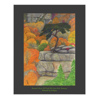 Buzzard's Roost - Fall Creek Falls State Park Poster