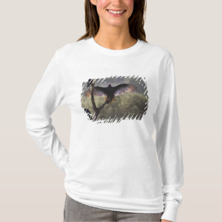Buzzards' Roost near Leaky, Texas T-Shirt