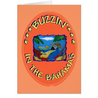 BUZZIN' IN THE BAHAMAS CARD