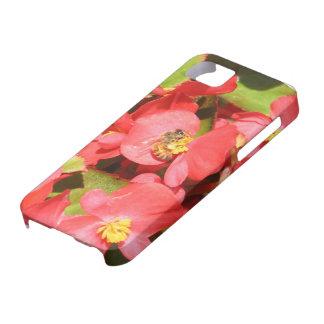 Buzzing iPhone SE/5/5s Case