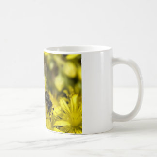 Buzzy bee coffee mug