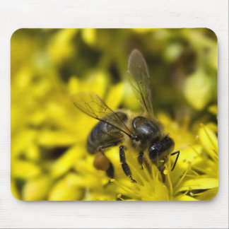 Buzzy bee mouse pad